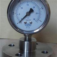 TYTP-100S卫生级不锈钢衬四氟隔膜压力表