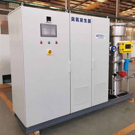 泳池臭氧发生器-游泳池水消毒设备厂家