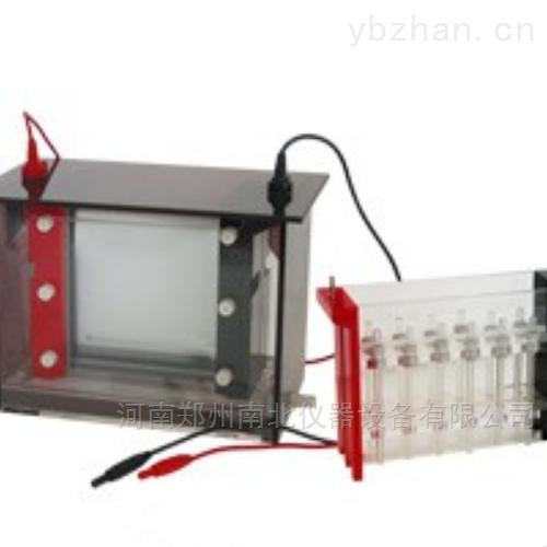 JY-SX3双向电泳槽