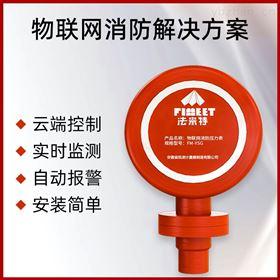 FM-YSG法米特灭火器压力表