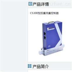 CS300七星华创质量流量控制器