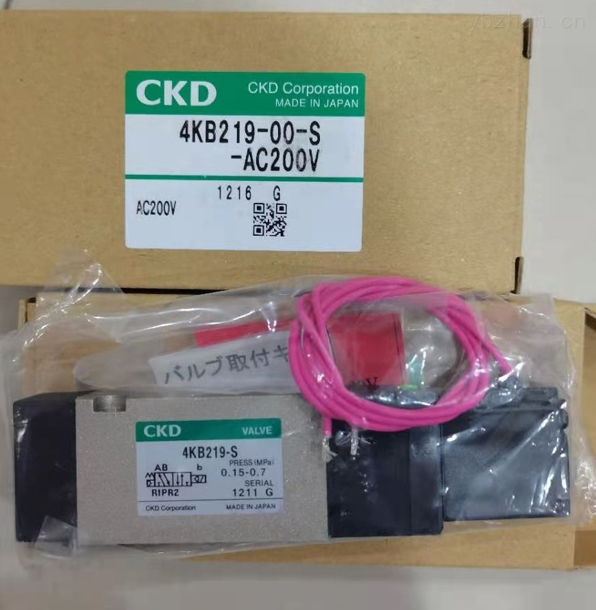 4KB219-00-S-AC220V.jpg