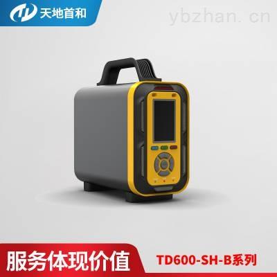 TD600-SH-B-N2H4手提式肼分析仪可选配采样手柄检测高温环境