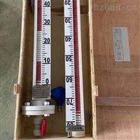 硫酸储罐液位计