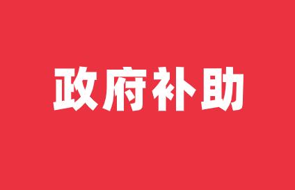 皖仪科技及控股子公司获得政府补助1393.55万元