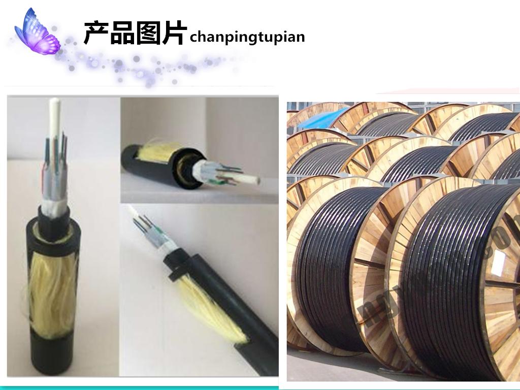 安徽厂家RVSP4*1.0电缆*